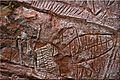 Abstract, rock art in Amambay, Paraguay.jpg