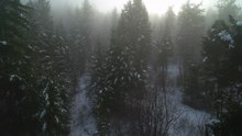 File:Aerial View of freezing fog in the Okanagan Highlands.webm