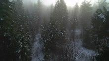 Archivo: Vista aérea de la niebla helada en las tierras altas de Okanagan.webm