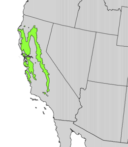 Aesculus californica range map.png