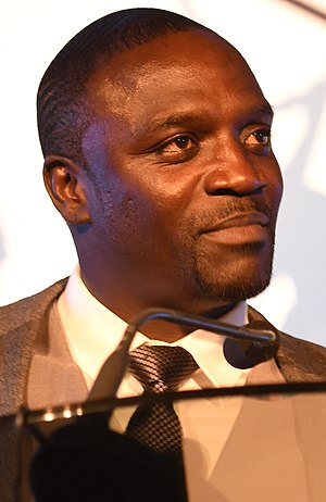 A picture of Akon wearing a suit