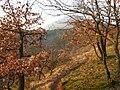 Albersweiler, Germany - panoramio.jpg