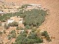 Algérie Wilaya de Ghardaïa Ghardaïa - panoramio (20).jpg