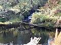 Allt Coire na Beithe at River Farrar. - geograph.org.uk - 1520863.jpg