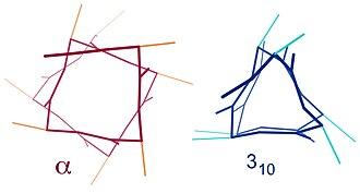 Alpha helix - Contrast of helix end views between α (offset squarish) vs 310 (triangular)