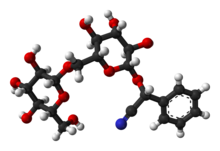 Amygdalin Wikipedia