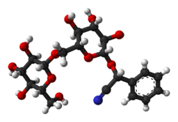 3D model (R)-amygdalinu