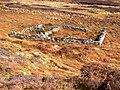 Animal Enclosure - geograph.org.uk - 1377946.jpg