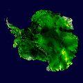 Antarktis falschfarben viaNASAsatellite.jpg