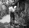 Anton Sitar, Senik 14, tese hlod za kosje s tesavno sekiro 1953.jpg