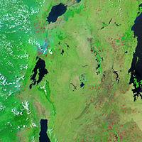 Image of the region between Lake Victoria (on the right) and Lakes Albert, Kivu and Tanganyika (from north to south) showing dense vegetation (bright green) and fires (red)