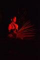 Ara Baha - Birbhum Blossom Theatre - Sriniketan - Birbhum 2017-10-21 5307.JPG