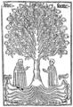 Arbor-scientiae.png
