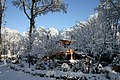 Ariccia monte gentile nevicata - panoramio.jpg