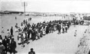 Armenian refugee camp port said