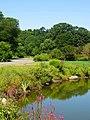 Arnold Arboretum - Aug 2005 (b).JPG