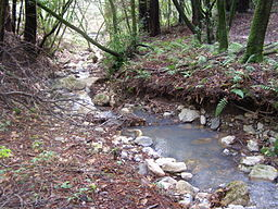 Arroyo Seco Creek.jpg