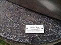 Ascona Monte Verita 2011-07-10 16 46 47 PICT3272.JPG