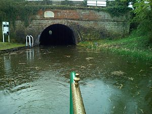 Ashby Canal - Snarestone Tunnel, just before the present terminus, is crooked in the middle