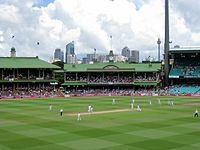 Ashes 2010-11 Sydney Test final wicket.jpg