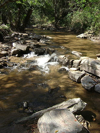 Anamalai Tiger Reserve - Athioda stream at the park