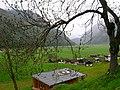 Außerpfitsch-gorgler - panoramio.jpg