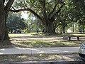 Audubon Park, New Orleans, 18 November 2016.jpg