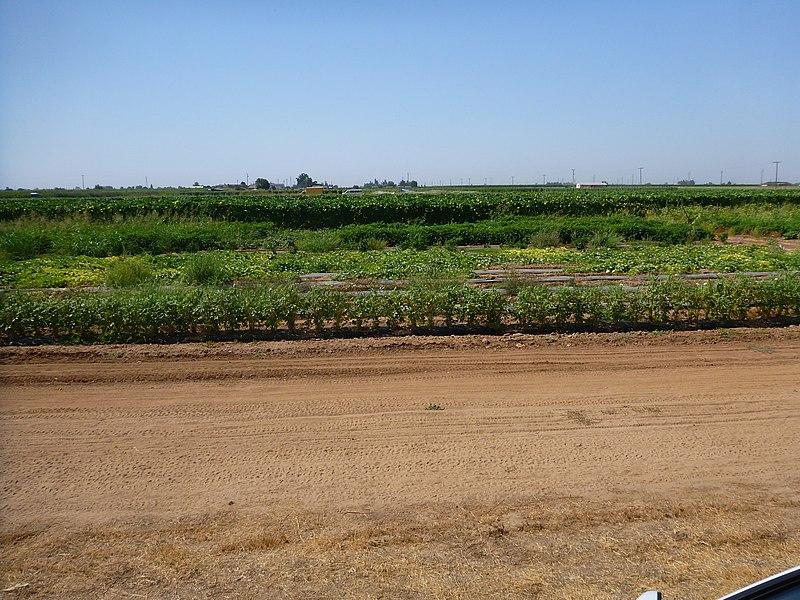 File:August 2012 - panoramio (84).jpg