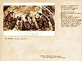 Avignon Porche de Notre-Dame des Doms Fresque de Simone Martini restaurée.jpg
