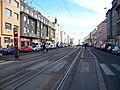 Bělohorská, zastávka U Kaštanu.jpg