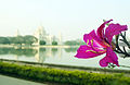 BEAUTY WITH GLORY-VICTORIA MEMORIAL HALL.jpg