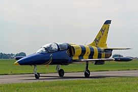Baltic Bees - Radom Air Show - 20170826 6799 DxO.jpg