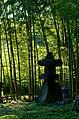 Bamboo grove - panoramio.jpg