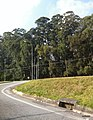 Barueri - SP - panoramio (20).jpg