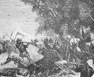 Battle of Núi Bop - French infantry capture a Chinese fort at Nui Bop, 4 January 1885