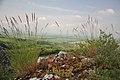 Bavory - Pálava - panoramio.jpg