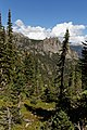 Bear Lake to Cub Lake (9762539171).jpg