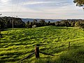 Bellawongarah, New South Wales 2.jpg