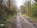Belvidere Road, Exeter - geograph.org.uk - 137160.jpg