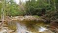 Bemis Falls, Arethusa Falls Trail, Hart's Location (494251) (11924565103).jpg