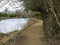 Beverley Beck Footpath - geograph.org.uk - 733111.jpg