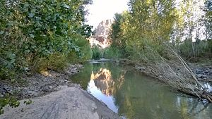 Big Sandy River (Arizona) - The Big Sandy River seen at the north end of the Arrastra Mountain Wilderness.