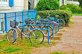 Bikes and bikes.JPG
