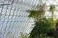 Biosphere 2015 01 18 0049.jpg