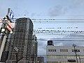 Birds on cables at dusk 2.jpg