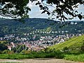 Blick über Heslach - panoramio.jpg