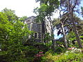 Bodnant Garden Frühsommerimpression 3.jpg
