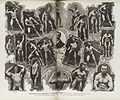 Body building poses by Bobby Pandour, c. 1906 Wellcome L0039134.jpg