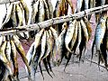 Bokkoms - whole, salted and dried mullet.jpg