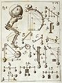Borelli, De motu animalium, 1734 Wellcome L0031736.jpg